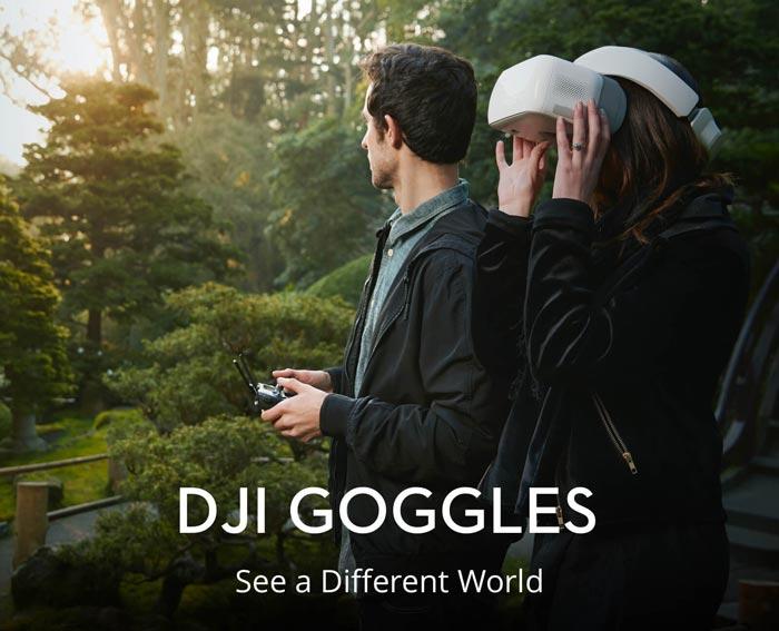 عینک دی جی آی گاگلز DJI GOGGLES
